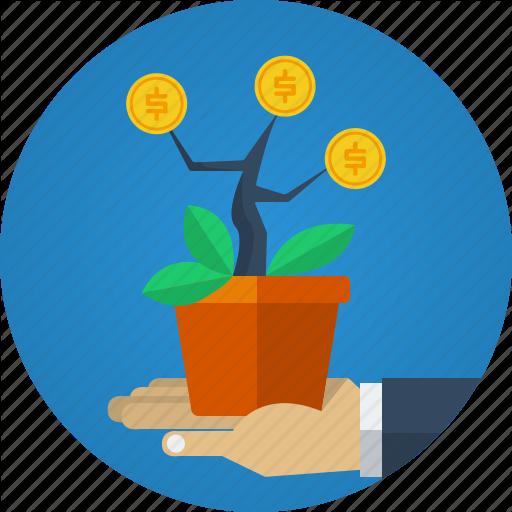 money-plant-512