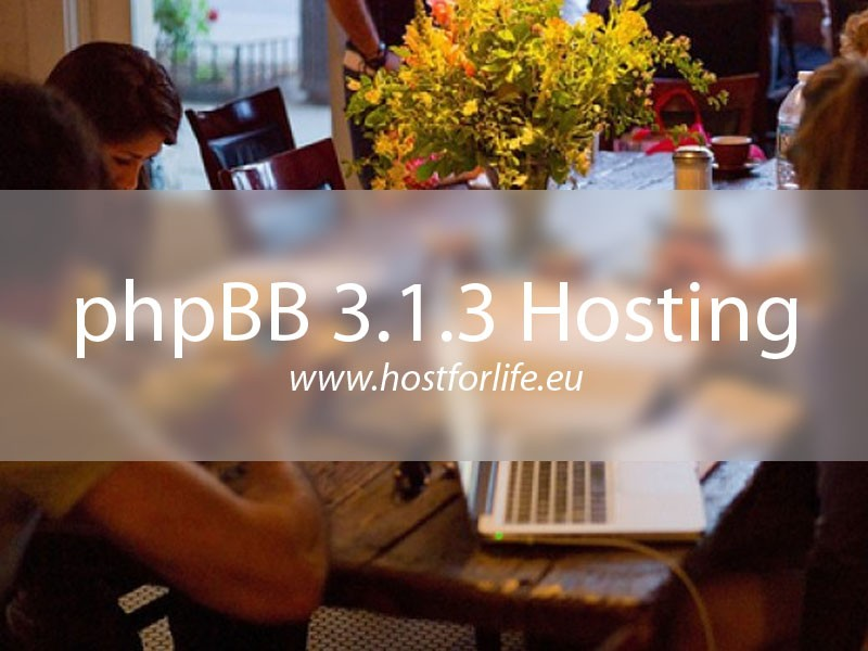 php_BB_313_hosting